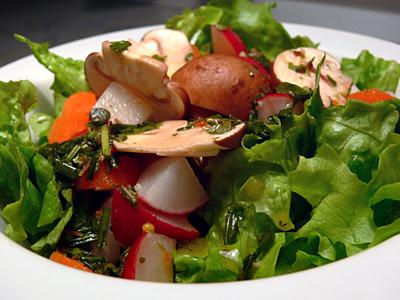 Grüner Salat mit Möhren und Radieschen